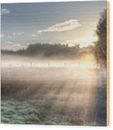 Mystical Fogs Of Florida Wood Print
