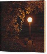 Mystical Light Wood Print