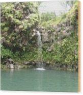 Mystical Waterfall Wood Print
