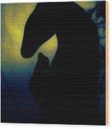 Mysticscape Eyes A10a Wood Print