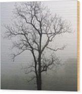 Mysty Tree 3 Wood Print