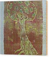 Myxomycetes 3 Wood Print