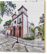 Naguanagua Church Wood Print