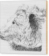 Nahkohemeo'e Wood Print