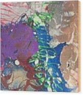 Nail Polish Abstract 15-t11 Wood Print