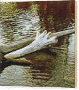 Nailbiting Driftwood Wood Print
