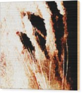 Nails Wood Print by Andrea Barbieri