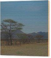 Namibia Landscape Wood Print