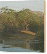 Namibian Waterway Wood Print