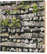 Nan Madol Wall2 Wood Print