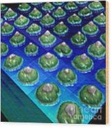 Nanoparticles, Lithium Metal, Afm Wood Print