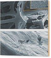 Nanotubes, Flame-resistant Coating, Sem Wood Print