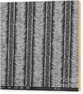 Nanowires, Nanowalls, Sem Wood Print
