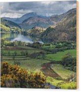 Nant Gwynant Valley Wood Print