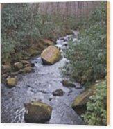 Nantahala Stream Wood Print