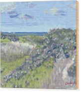 Nantucket June Dunes I Wood Print