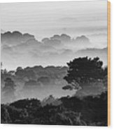 Nantucket Middle Moors In Fog Wood Print