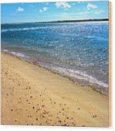Nantucket Sound - Y1 Wood Print