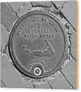 Nantucket Water Meter Cover Wood Print