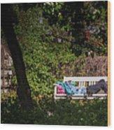 Nap On A Park Bench Wood Print