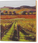 Napa Carneros Vineyard Autumn Color Wood Print