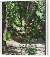 Napa Rose Pathway Wood Print
