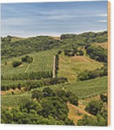 Napa Valley California Panoramic Wood Print