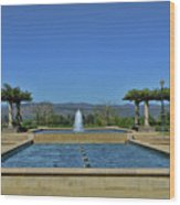 Napa Valley Inglenook Vineyard -4 Wood Print
