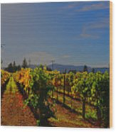 Napa Valley  Wood Print