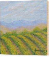Valley Vineyard Wood Print