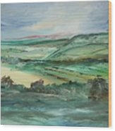 Napa Valley Vineyards Wood Print