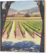 Napa Wine Vineyard Summer Wood Print