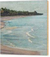 Naples Beach Wood Print