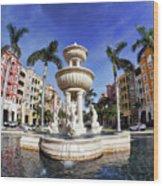 Naples Florida Iv Wood Print