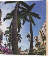 Naples Florida V Wood Print