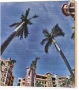 Naples Florida Vii Wood Print