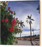 Naples Florida Xii Wood Print