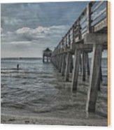 Naples Pier And Beach Fun Wood Print