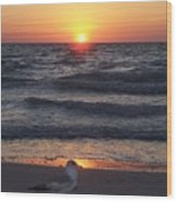Naples Sunset 0042 Wood Print
