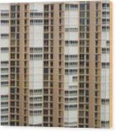 Naples Windows Wood Print