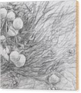 Naranjas En Nocaima Wood Print