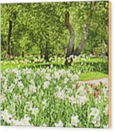 Narcissus In Apple Garden Wood Print