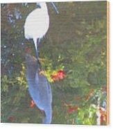 Narcissusgret Wood Print