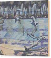 Narrabeen Lakes 2 Wood Print