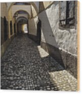 Narrow Cobblestone Alley Ribji Trg Or Fish Square From Cankar Qu Wood Print