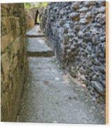 Narrow Mayan Road Wood Print