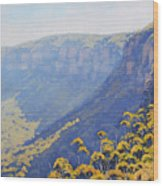 Narrow Neck Katoomba Wood Print