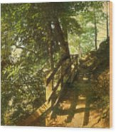 Narrow Road Wood Print