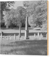 Nashville City Cemetery - 2 Wood Print