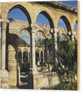 Nassau Cloisters Wood Print